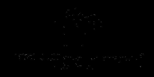 Logo Elystella
